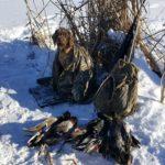 cold-ducks
